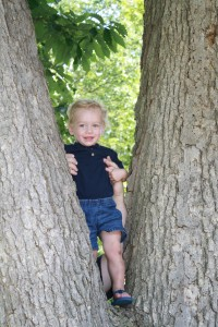 Andrew in the tree