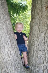 Andrew in the tree