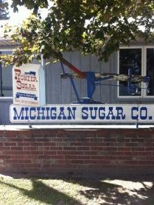 Mi sugar