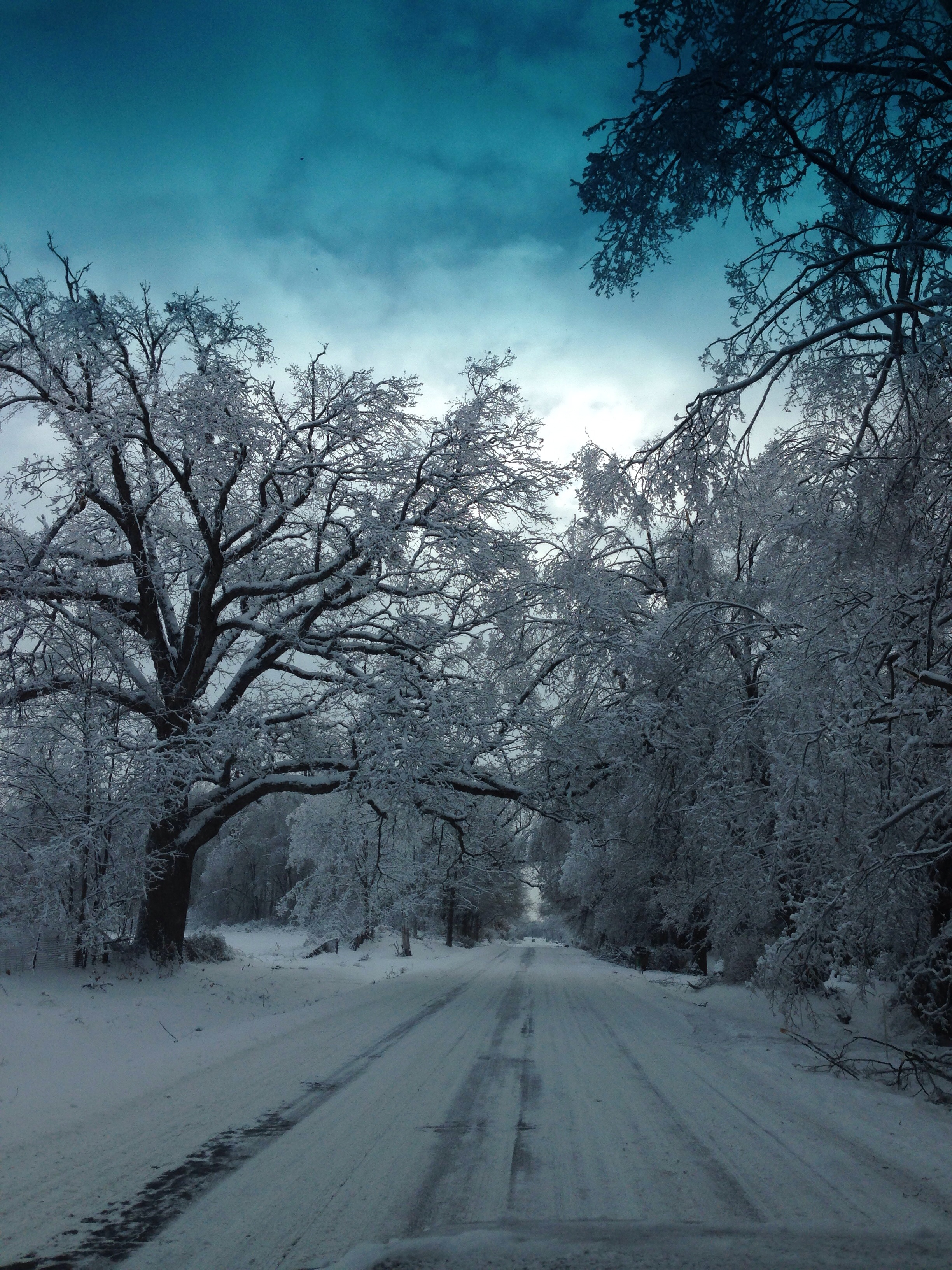Michigan winter 2